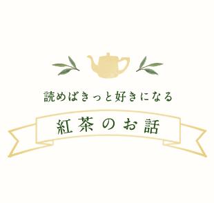 紅茶のお話